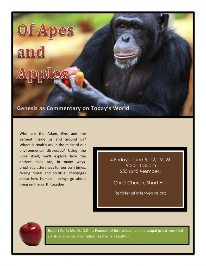 Of Apes and Apples